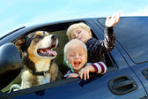 Happy Children and Dog in Minivan — Stock Photo