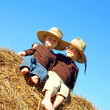 Happy Big Brother and Baby Sitting on Hay Bale Outside — Stock Photo #32488729