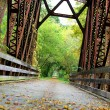 Covered Iron Bridge in Woods — Stock Photo