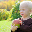 Sweet Baby Boy Holding Apple on Autumn Day — Stok fotoğraf
