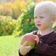Sweet Baby Boy Holding Apple on Autumn Day — Foto Stock
