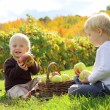 Young Children Eating Fruit at Apple Orchard — Stock Photo
