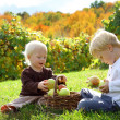 Young Children Playing Outside at Apple Orchard — Stock Photo