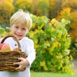Cute Happy Child Carrying Basket of Apples at Orchard — Stock Photo