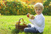 Very Happy Boy Holding Fruit at Apple Orchard in Autumn — Stock Photo