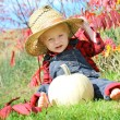 Cute Baby Country Boy in Autumn — Stock Photo #33146549