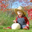 Smiling Country Boy Baby in Autumn Foliage — Stock Photo #33146587