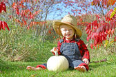 Smiling Country Boy Baby in Autumn Foliage — Stock Photo
