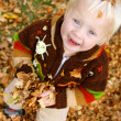 Baby Playing Outside in Falling Leaves — Stock Photo #33599661