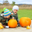 Two Young Children Carving Pumpkins — Stock Photo