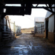 Inside Old Barn Corral Border — Stock Photo #34386209