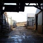 Inside Old Barn Corral Border — Stock Photo
