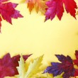 Colorful Autumn Leaves Frame on Yellow Background — Stock Photo #34701103