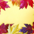 Colorful Autumn Leaves Frame on Yellow Background — Stock Photo