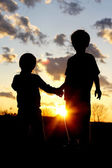 Young Brothers Holding Hands in Front of Sunset — Stock Photo