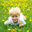 Cute Child Laying in Meadow of Dandelion Flowers — Stock Photo
