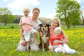 Happy Family Portrait in Flower Meadow — Stock Photo