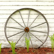 Antique Wooden Wagon Wheel on Rustic White Background — Stock Photo #48951001