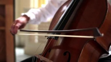 Musician Playing the Cello — Stock Video