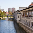 Stock Photo: River in Ljubljana