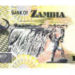 Banknote of Zambia — Foto Stock #25061297