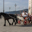 Old carriage during a historical re-enactment in Trieste — Stock Photo