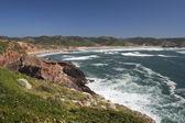 Amado beach, algarve, portugalia — Zdjęcie stockowe
