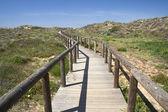 木制的走道通往 bordeira 海滩,阿尔加维,葡萄牙 — 图库照片