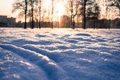雪の上の足跡 — ストック写真