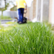 Grass and lawn mowing — Stock Photo