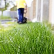 Grass and lawn mowing — Stok fotoğraf