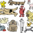 Vector group cartoon of types of dogs — Stock vektor