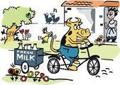 Vector cartoon of happy cow delivering milk on bicycle. — Stock Vector