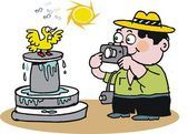 Vector cartoon of tourist taking picture of bird. — Stock Vector