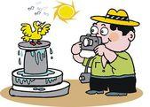 Vector cartoon of tourist taking picture of bird. — Stock Vector