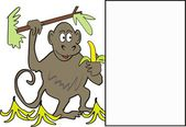 Cartoon of monkey with bananas and blank display square — Stock Vector