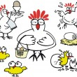 Vector cartoon showing group of hens — Stock Vector