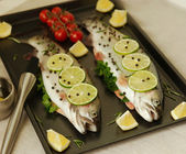 Raw fish. Healthy dinner preparation — Foto de Stock