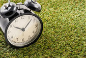 Clock on grass — Stok fotoğraf