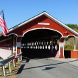 Thompson Covered Bridge — Stock Photo