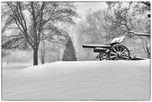 Canon in Greeley Park — Stock Photo