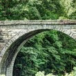Cheshire Railroad Stone Arch Bridge — Stock Photo #48678367