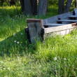 Old wooden boat on the grass with dandelions — Stock Photo