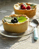 Mini berry tarts on knitted tablecloth — Stock Photo