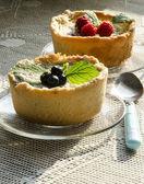Tartelettes de berry mini sur nappe tricotée — Photo