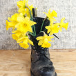 Black military muddy shoes with yellow narcissus — Stock Photo #44298115