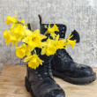 Black military muddy shoes with yellow narcissus — Stock Photo
