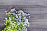 Bouquet of Forget me nots on rustic wooden table — Stock Photo