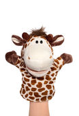 Zebra puppet — Stock Photo