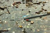 Poluição marinha — Fotografia Stock